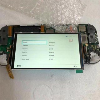 Nintendo Switch Lite LCD Gamepad Reparatur Screen Bildschirm Touch Display defekt